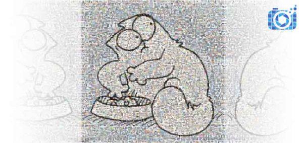 Wideo mozaika ze zdjęć dla firm Kot Simon PicArta