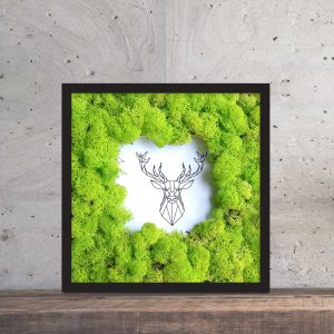 Obraz z mchu na ścianę obraz z chrobotka PicArta