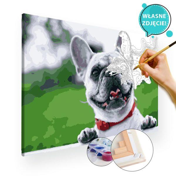 malowanie po numerach pies z własnego zdjęcia